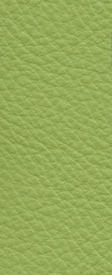 Wasabi Semi-Aniline Leather